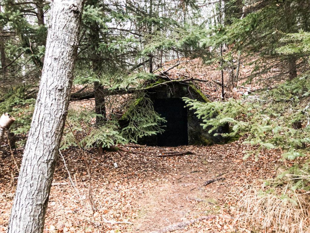 Sugarloaf Cove Root Cellar